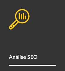 bt-analise-seo-2