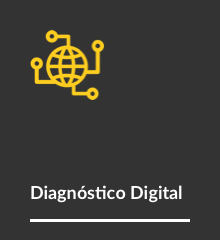 bt-diagnostico-digital-2
